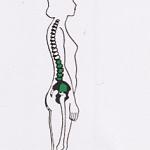 posizione lombare corretta
