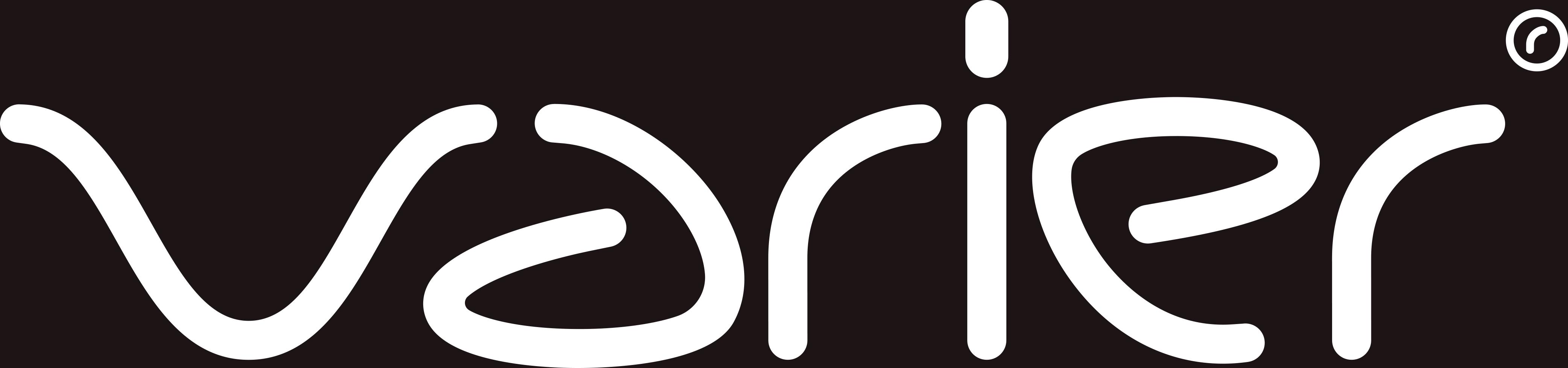 logo var8